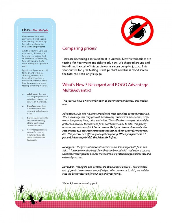 HW newsletter April JPEG