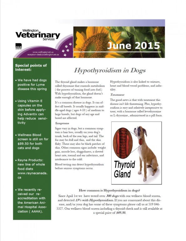 June news final 2 page 1